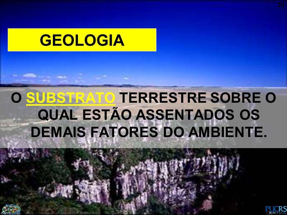 GEOLOGIA O SUBSTRATO TERRESTRE SOBRE O QUAL ESTÃO ASSENTADOS OS DEMAIS FATORES DO AMBIENTE.