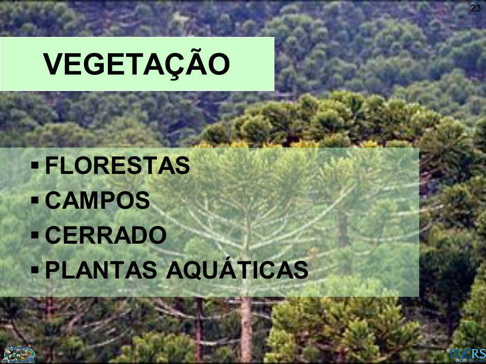 VEGETAÇÃO FLORESTAS CAMPOS CERRADO PLANTAS AQUÁTICAS
