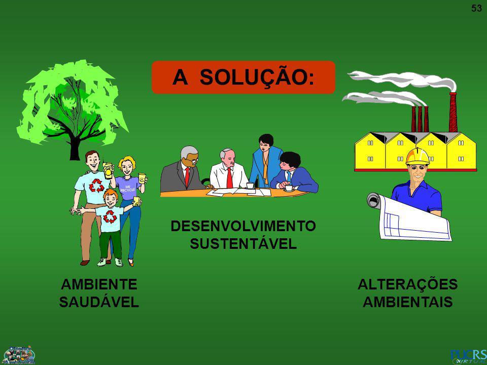 ALTERAÇÕES AMBIENTAIS DESENVOLVIMENTO SUSTENTÁVEL