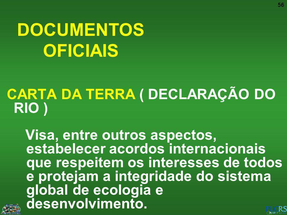 DOCUMENTOS OFICIAIS CARTA DA TERRA ( DECLARAÇÃO DO RIO )