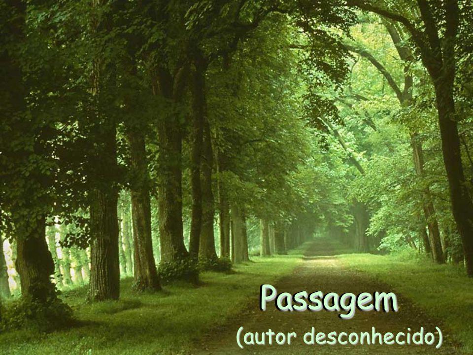 Passagem Passagem (autor desconhecido)