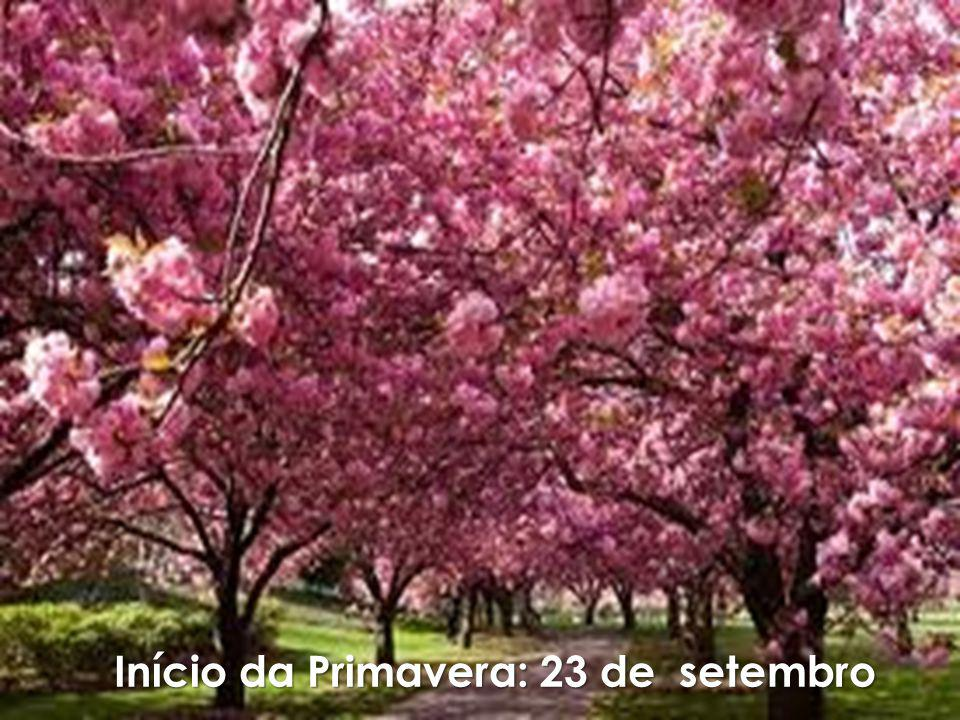 Início da Primavera: 23 de setembro