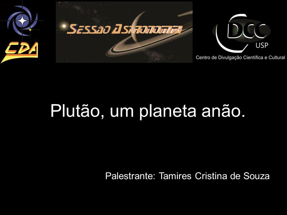 Palestrante: Tamires Cristina de Souza