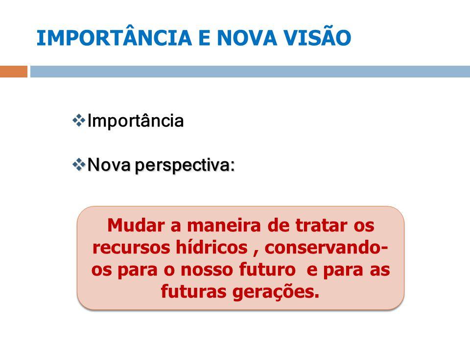 IMPORTÂNCIA E NOVA VISÃO