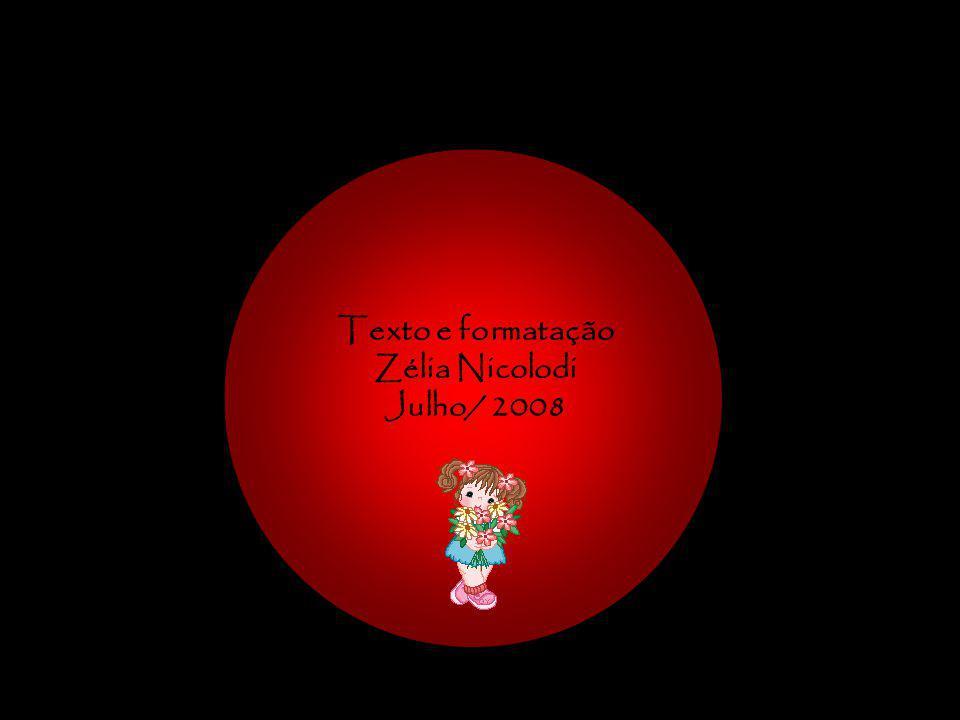 Texto e formatação Zélia Nicolodi Julho/ 2008