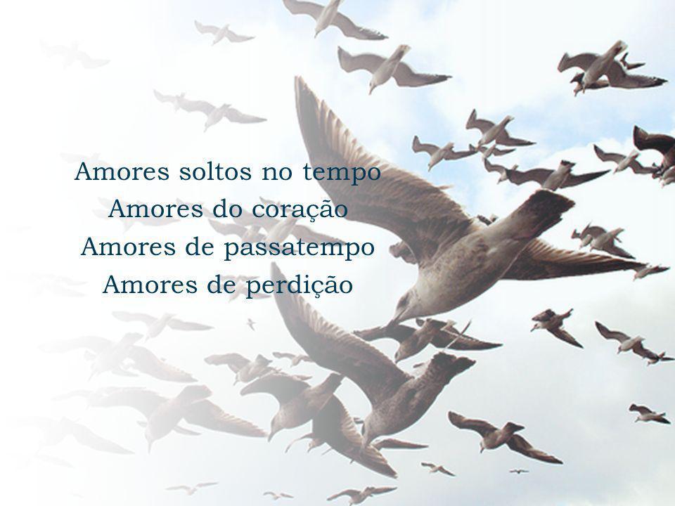 Amores soltos no tempo Amores do coração Amores de passatempo Amores de perdição
