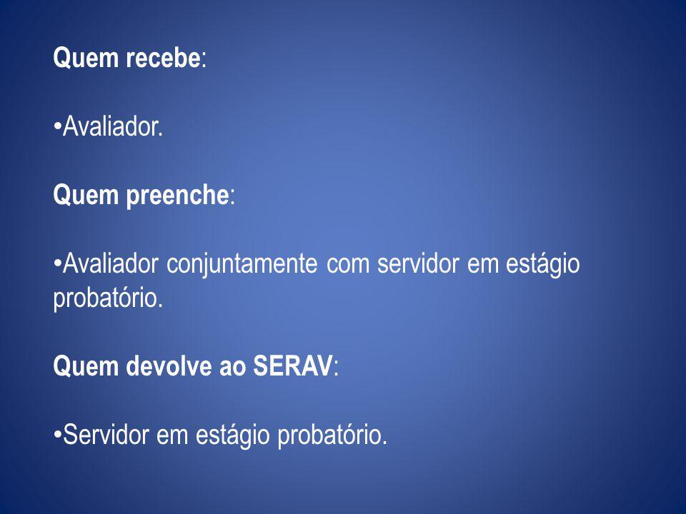Quem recebe: Avaliador. Quem preenche: Avaliador conjuntamente com servidor em estágio probatório.