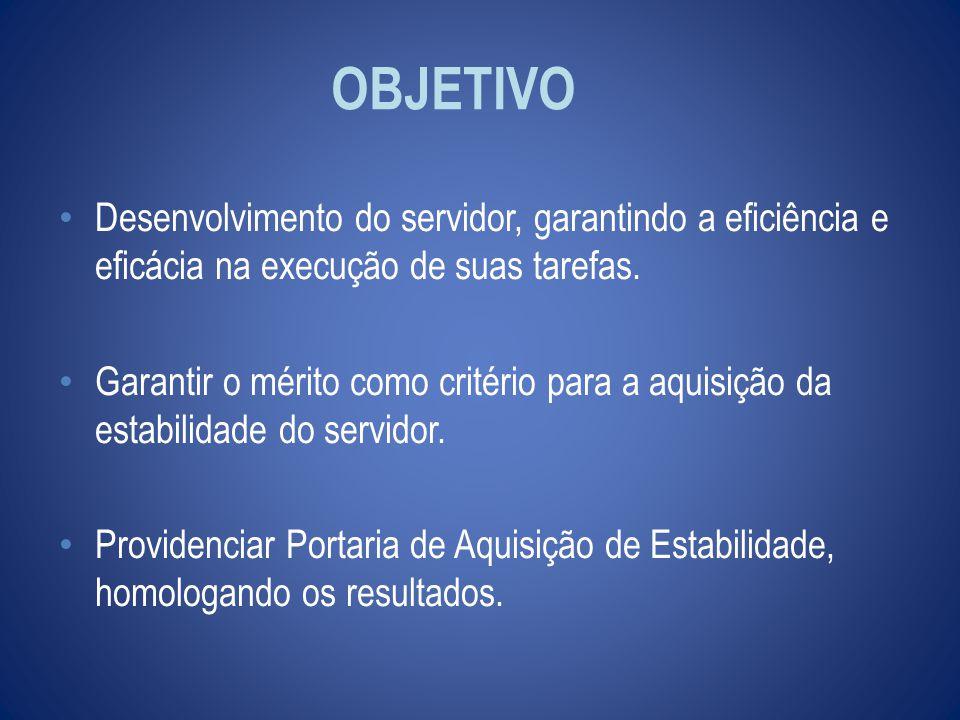 OBJETIVO Desenvolvimento do servidor, garantindo a eficiência e eficácia na execução de suas tarefas.