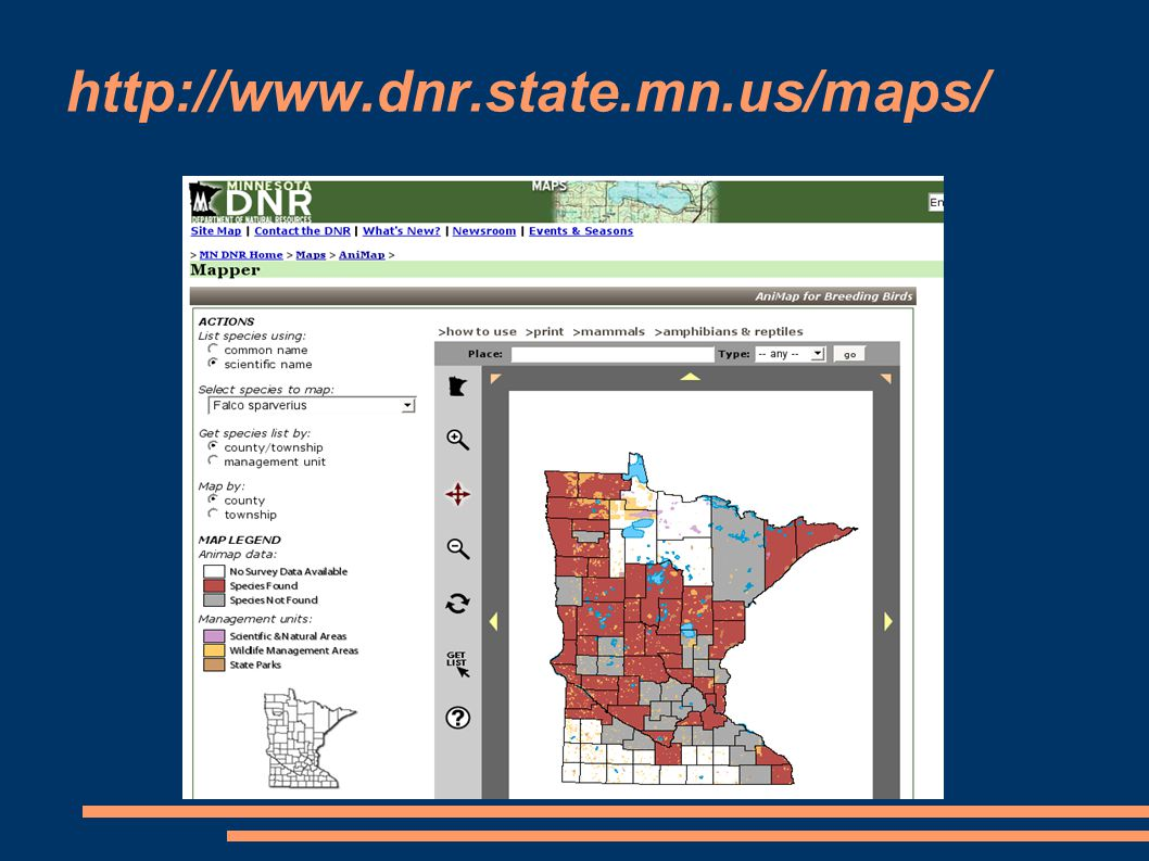 http://www.dnr.state.mn.us/maps/