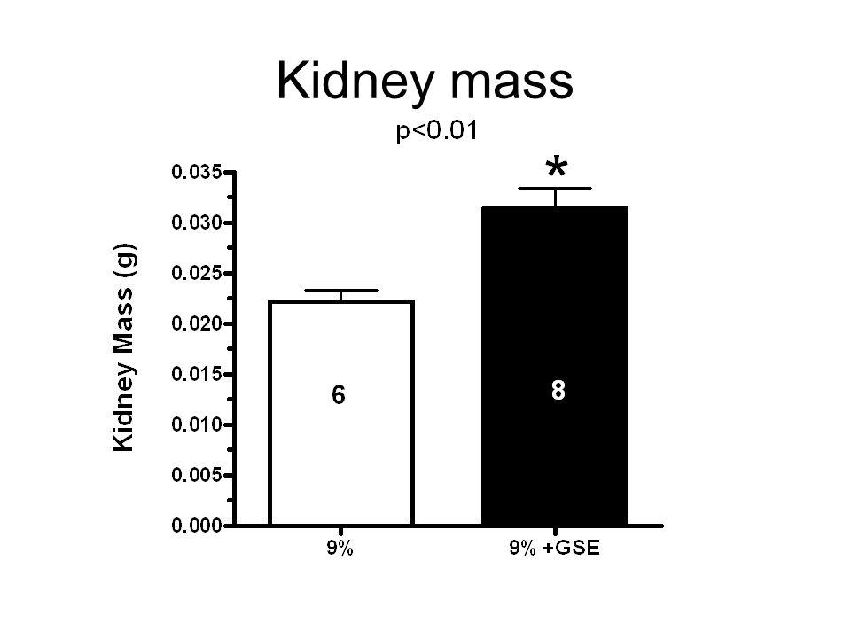Kidney mass