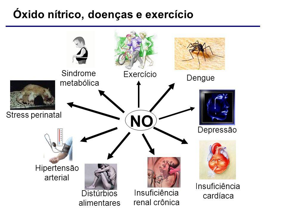 NO Óxido nítrico, doenças e exercício Sindrome Exercício metabólica