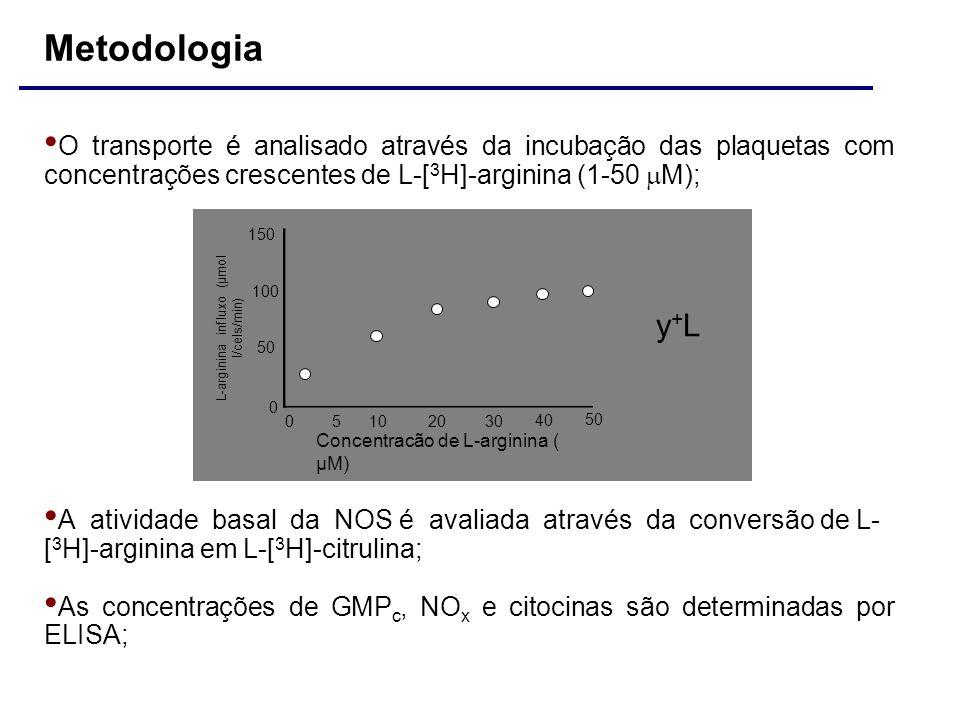 L-arginina influxo (µmol l/cels/min)