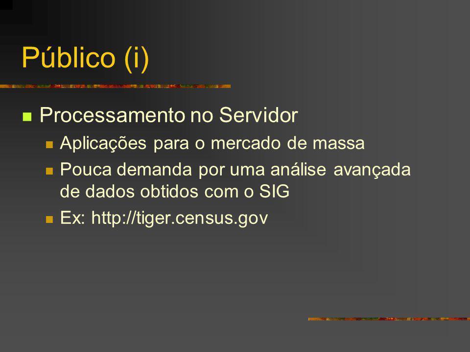 Público (i) Processamento no Servidor