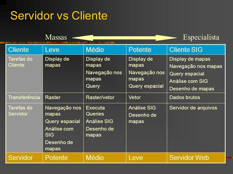 Servidor vs Cliente Massas Especialista Cliente Leve Médio Potente