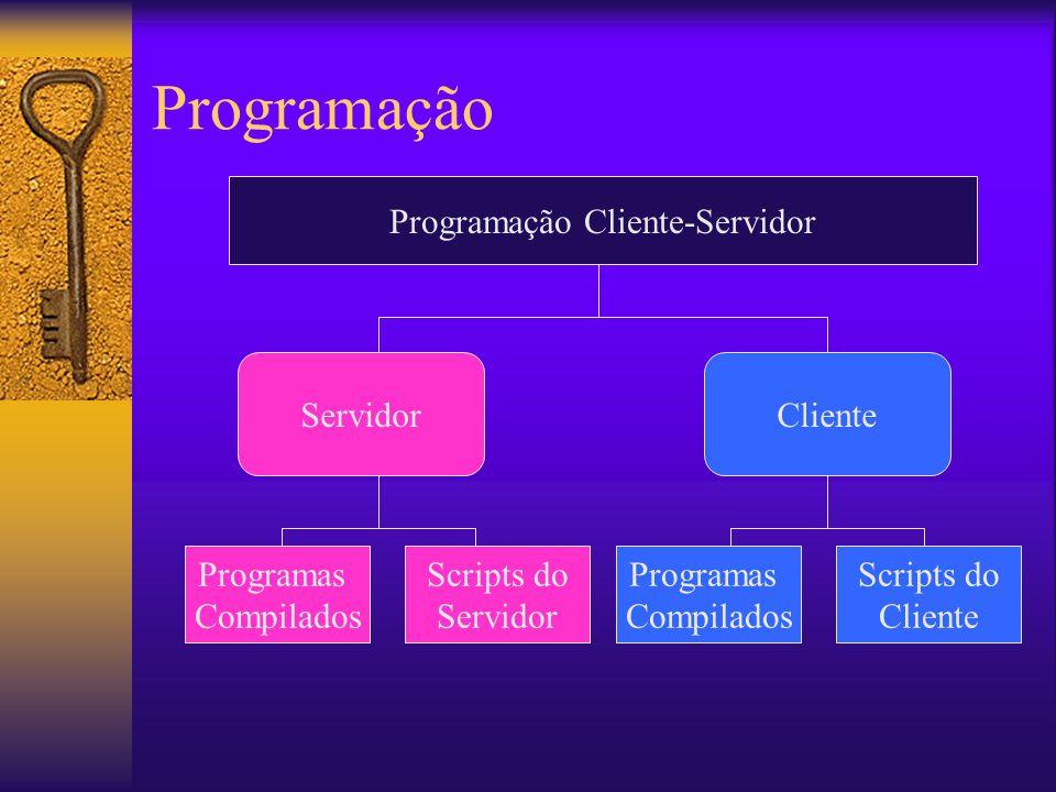 Programação Cliente-Servidor