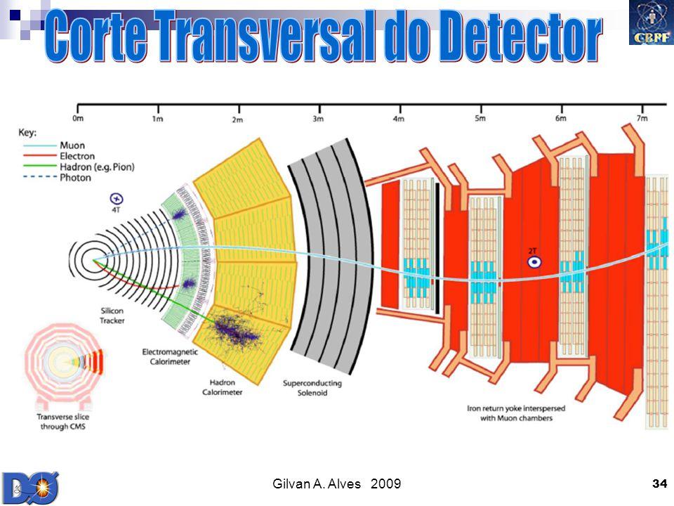 Corte Transversal do Detector