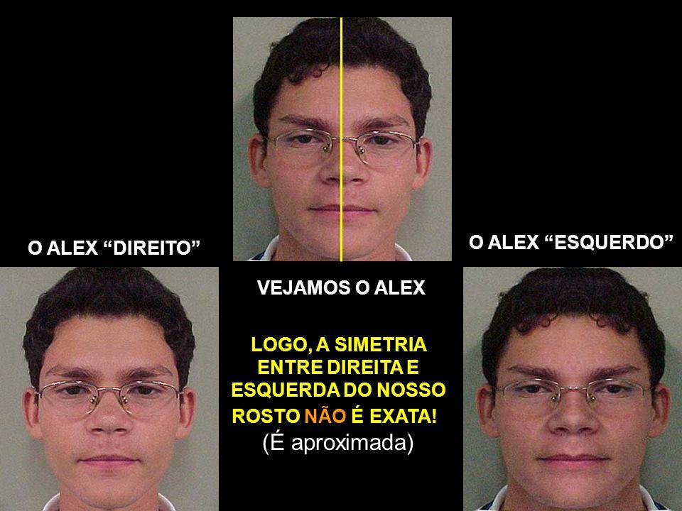 VEJAMOS O ALEX O ALEX ESQUERDO O ALEX DIREITO LOGO, A SIMETRIA ENTRE DIREITA E ESQUERDA DO NOSSO ROSTO NÃO É EXATA!.