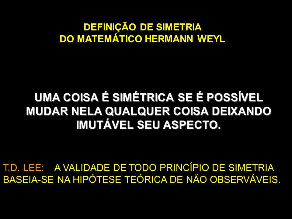 DEFINIÇÃO DE SIMETRIA DO MATEMÁTICO HERMANN WEYL