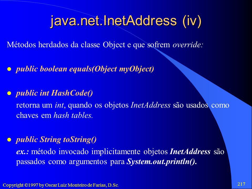 java.net.InetAddress (iv)