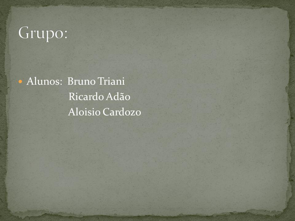 Grupo: Alunos: Bruno Triani Ricardo Adão Aloisio Cardozo