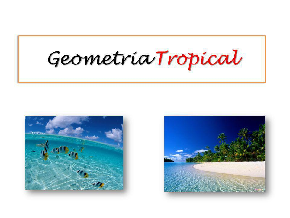 Geometria Tropical