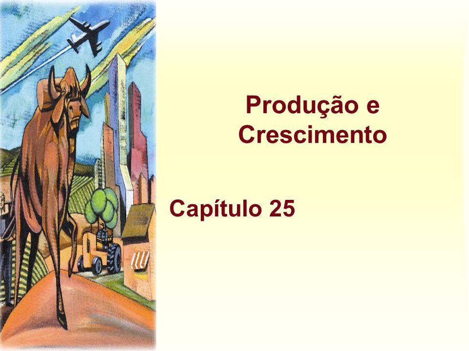 Produção e Crescimento