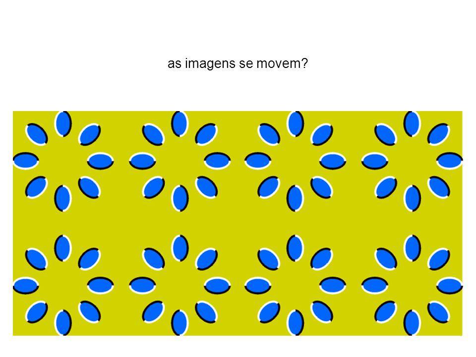 as imagens se movem