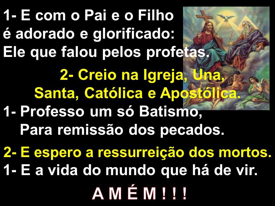 Santa, Católica e Apostólica. 2- E espero a ressurreição dos mortos.