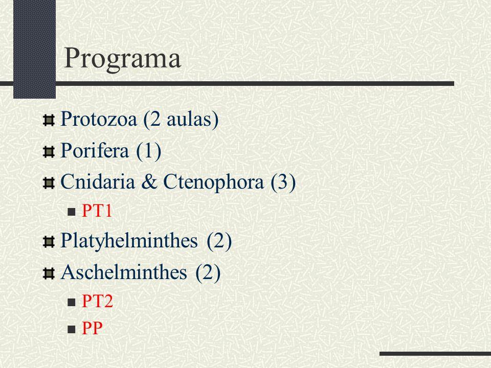 Programa Protozoa (2 aulas) Porifera (1) Cnidaria & Ctenophora (3)