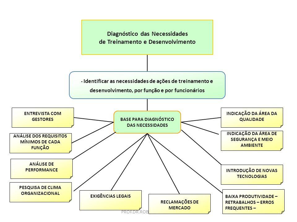 Diagnóstico das Necessidades de Treinamento e Desenvolvimento