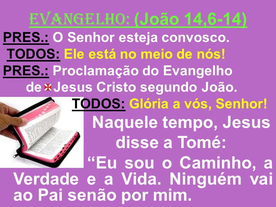 EVANGELHO: (João 14,6-14) Naquele tempo, Jesus disse a Tomé: