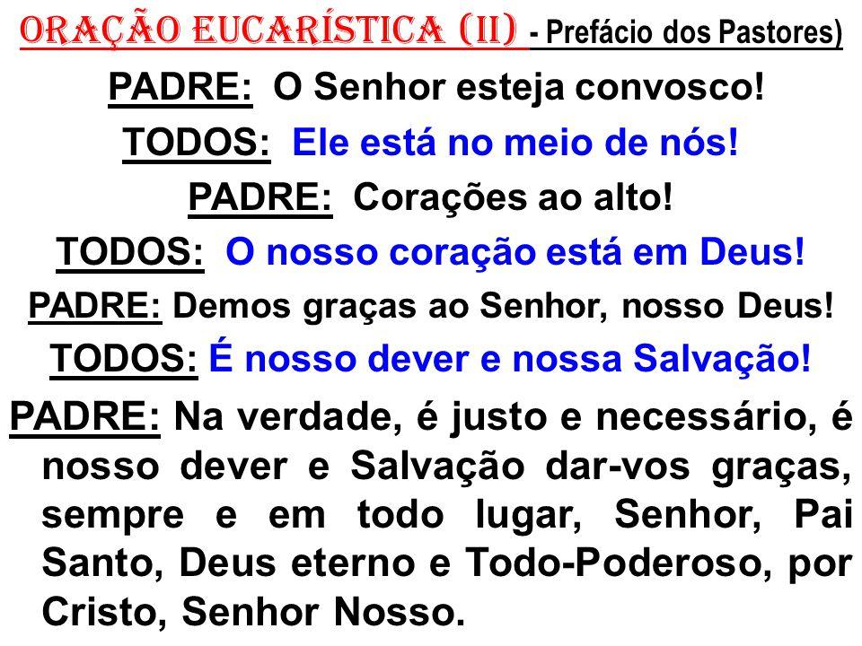 ORAÇÃO EUCARÍSTICA (II) - Prefácio dos Pastores)