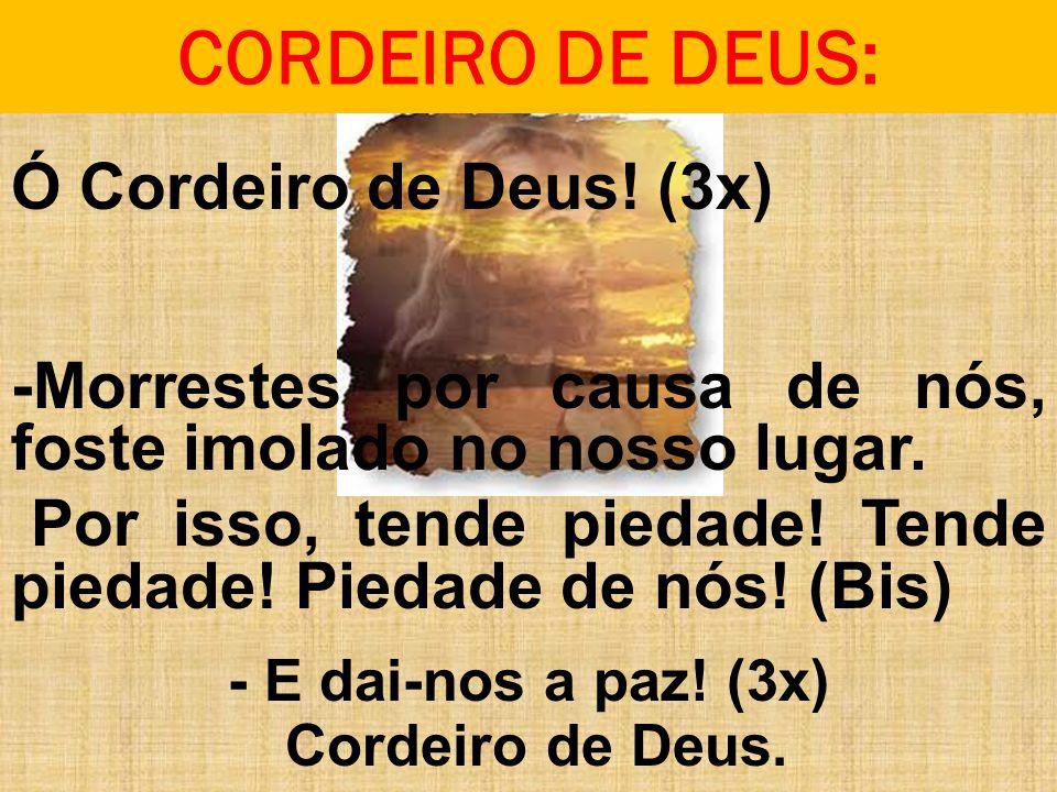 CORDEIRO DE DEUS: Ó Cordeiro de Deus! (3x) -Morrestes por causa de nós, foste imolado no nosso lugar.