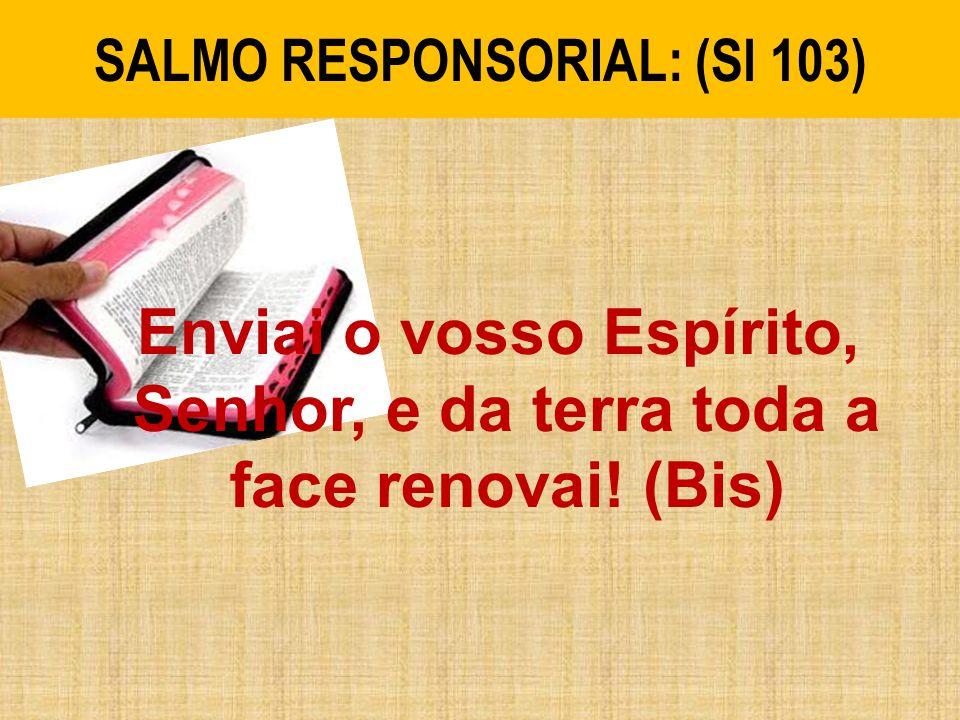SALMO RESPONSORIAL: (Sl 103)