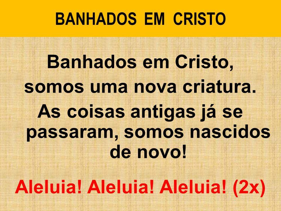 BANHADOS EM CRISTO