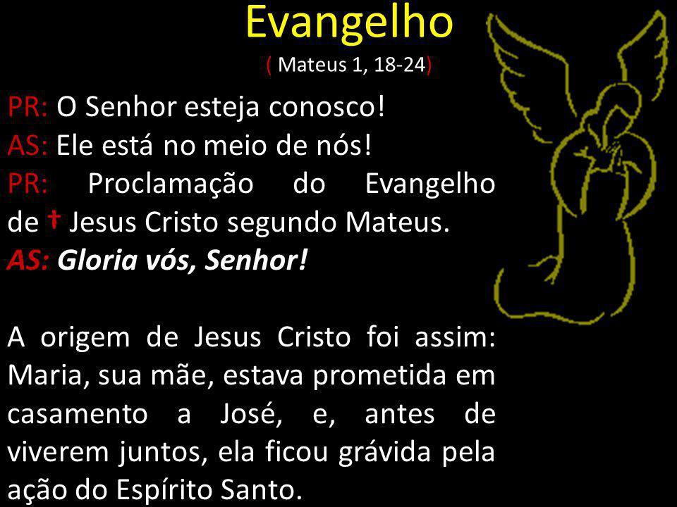 Evangelho ( Mateus 1, 18-24) PR: O Senhor esteja conosco!