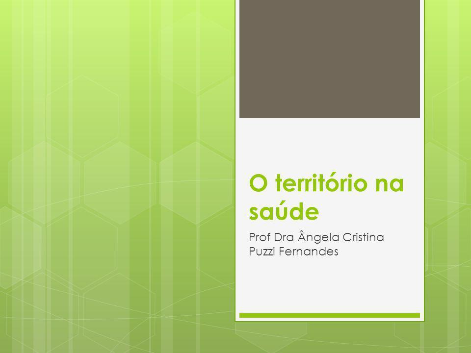 Prof Dra Ângela Cristina Puzzi Fernandes