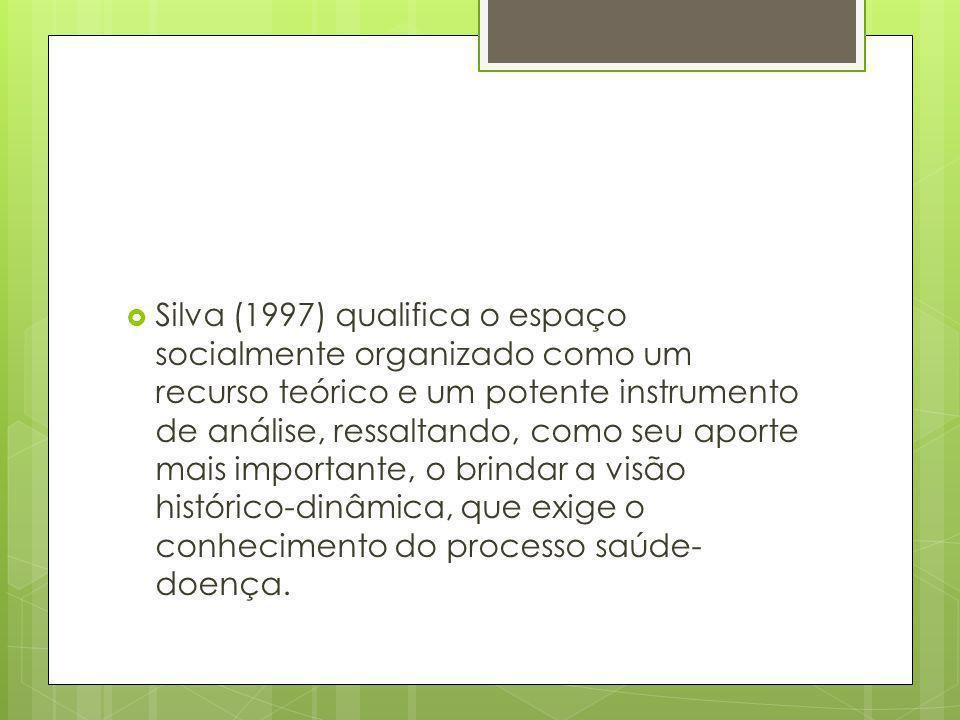 Silva (1997) qualifica o espaço socialmente organizado como um recurso teórico e um potente instrumento de análise, ressaltando, como seu aporte mais importante, o brindar a visão histórico-dinâmica, que exige o conhecimento do processo saúde-doença.