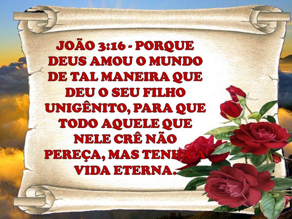 JOÃO 3:16 - PORQUE DEUS AMOU O MUNDO DE TAL MANEIRA QUE DEU O SEU FILHO UNIGÊNITO, PARA QUE TODO AQUELE QUE NELE CRÊ NÃO PEREÇA, MAS TENHA A VIDA ETERNA.
