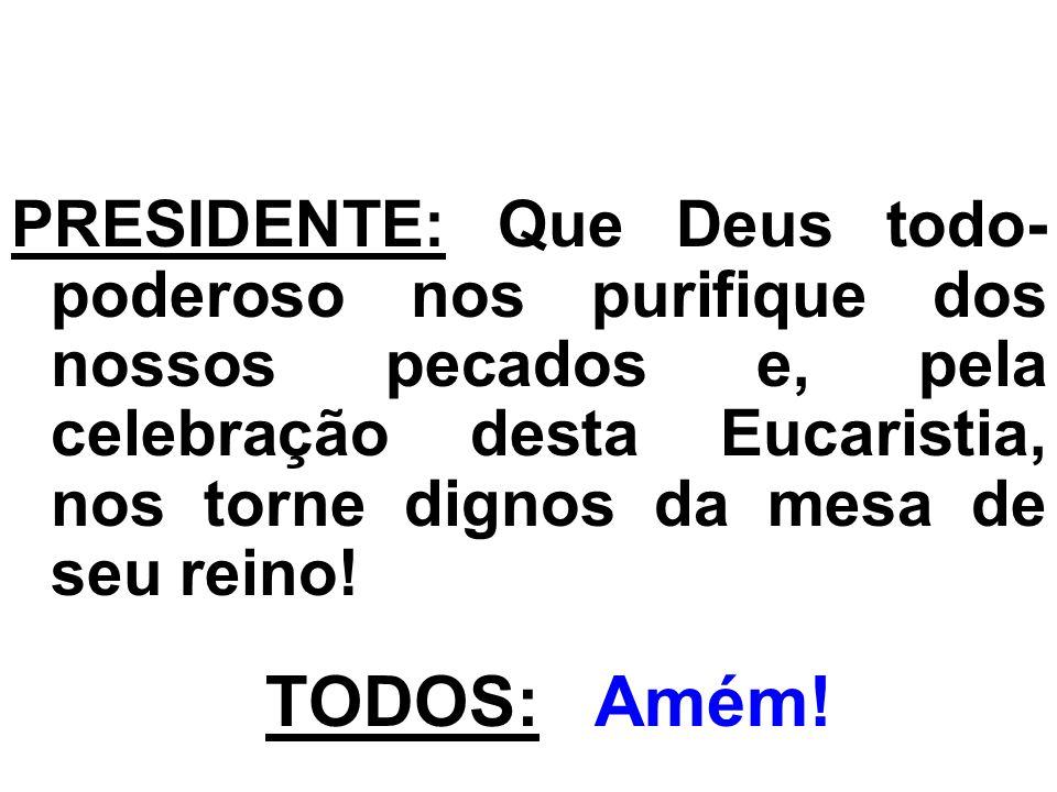 PRESIDENTE: Que Deus todo-poderoso nos purifique dos nossos pecados e, pela celebração desta Eucaristia, nos torne dignos da mesa de seu reino!