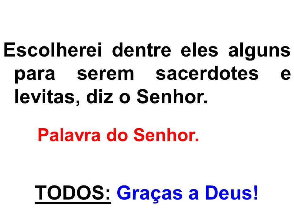 Escolherei dentre eles alguns para serem sacerdotes e levitas, diz o Senhor.