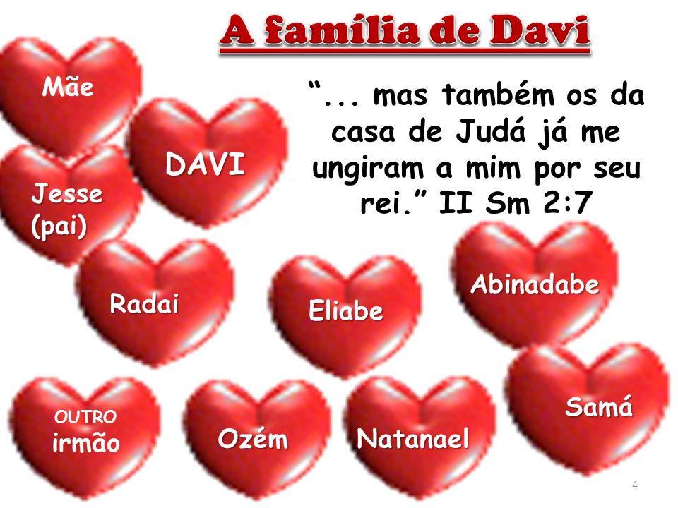 A família de Davi Mãe. ... mas também os da casa de Judá já me ungiram a mim por seu rei. II Sm 2:7.