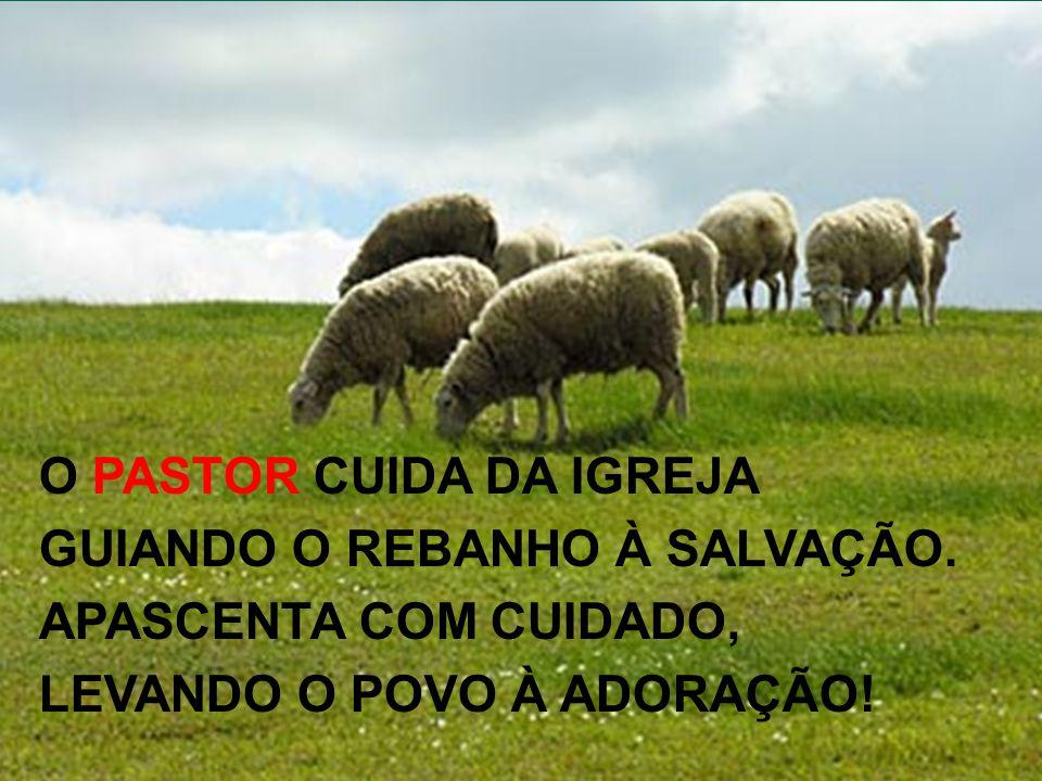 O PASTOR CUIDA DA IGREJA GUIANDO O REBANHO À SALVAÇÃO.