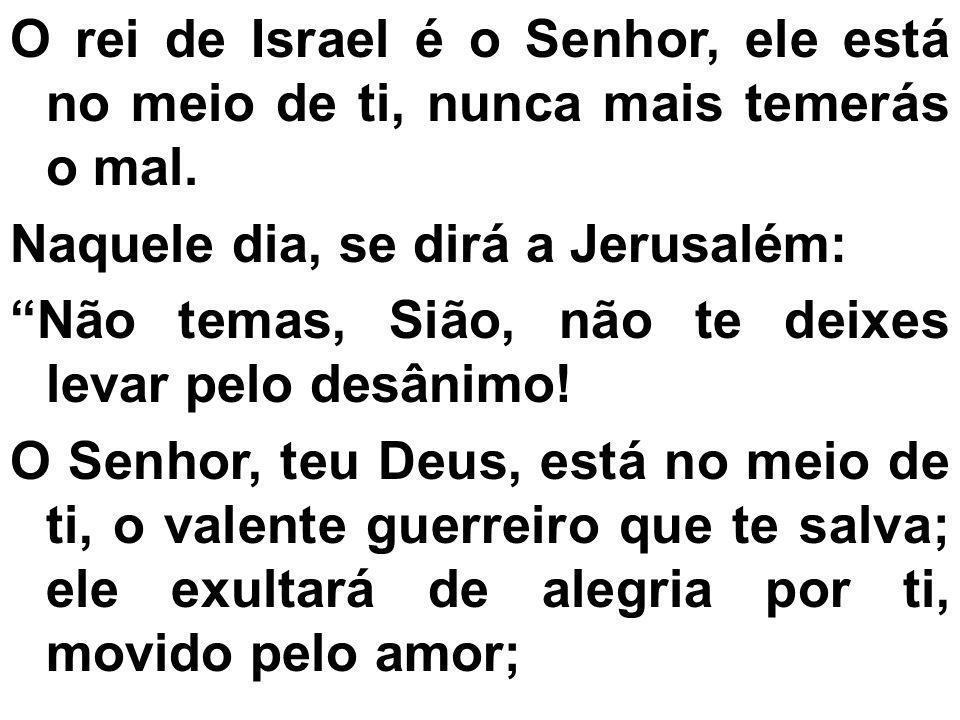 O rei de Israel é o Senhor, ele está no meio de ti, nunca mais temerás o mal.