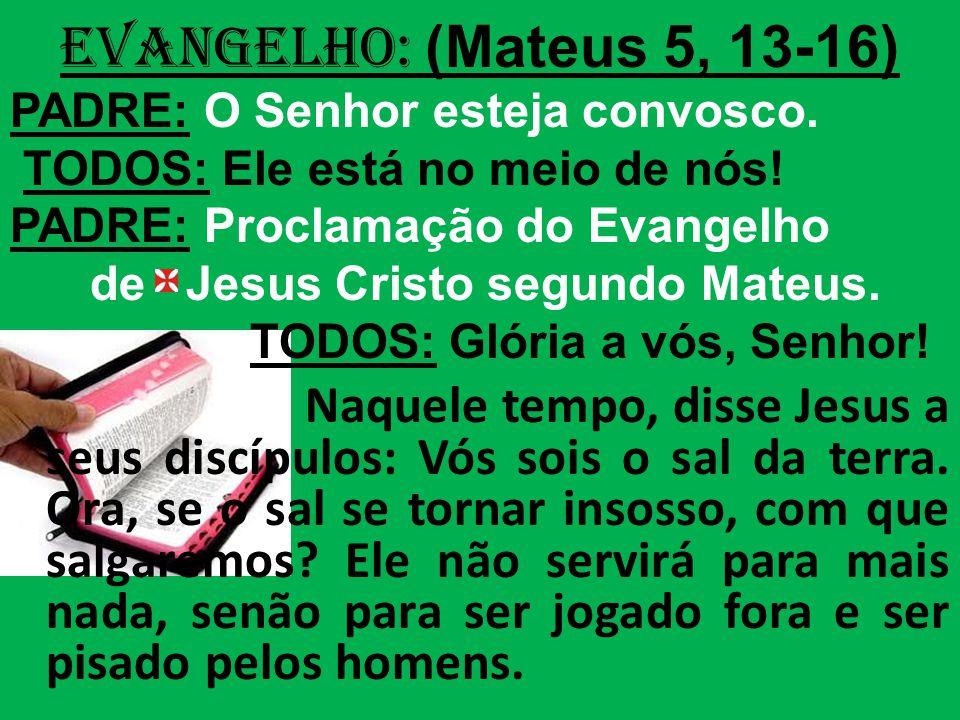 EVANGELHO: (Mateus 5, 13-16) PADRE: O Senhor esteja convosco. TODOS: Ele está no meio de nós! PADRE: Proclamação do Evangelho.