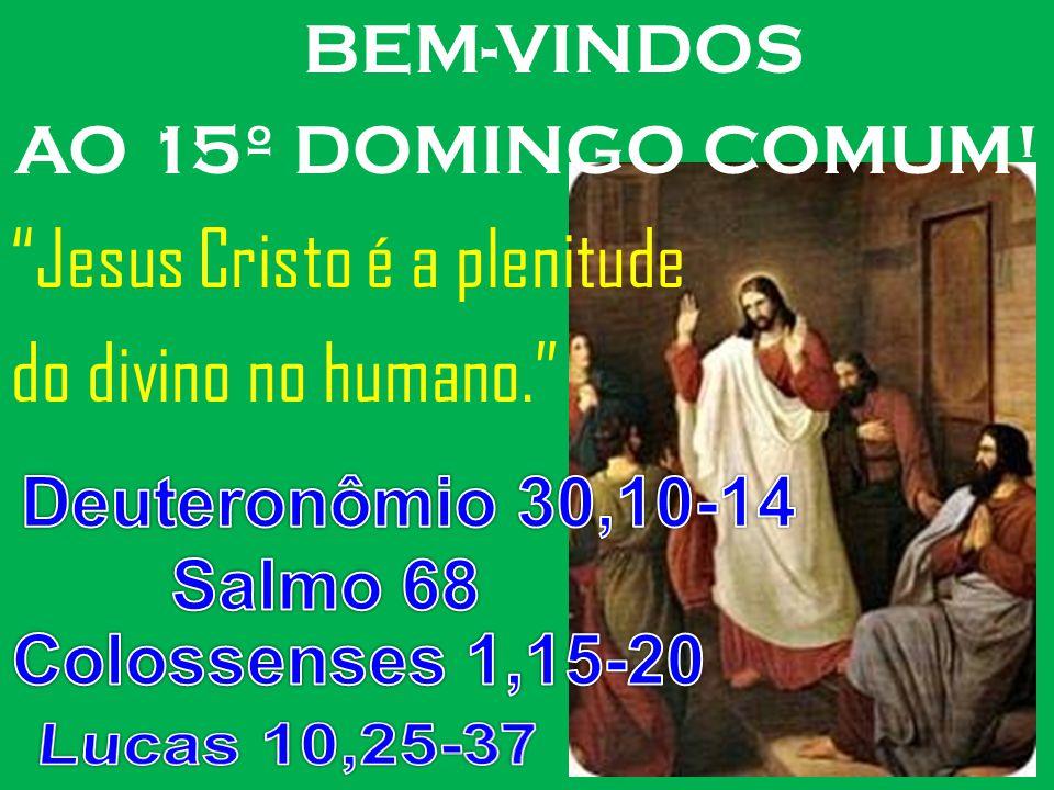 Jesus Cristo é a plenitude do divino no humano.