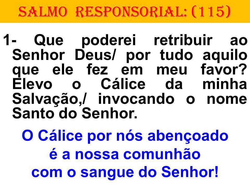 SALMO RESPONSORIAL: (115)