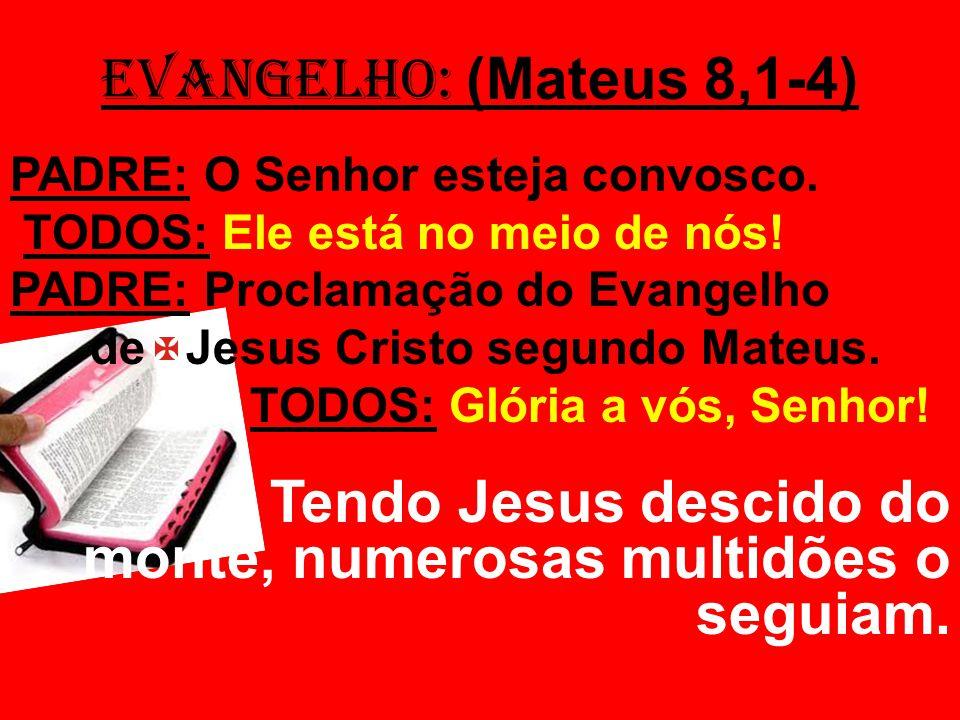 Tendo Jesus descido do monte, numerosas multidões o seguiam.