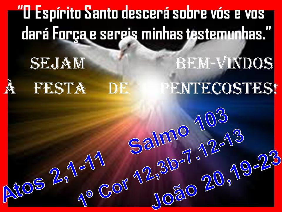 Salmo 103 Atos 2,1-11 João 20,19-23 1º Cor 12,3b-7.12-13