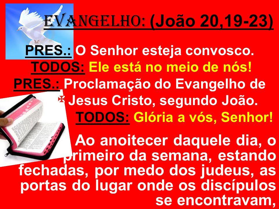 EVANGELHO: (João 20,19-23) PRES.: O Senhor esteja convosco. TODOS: Ele está no meio de nós! PRES.: Proclamação do Evangelho de.